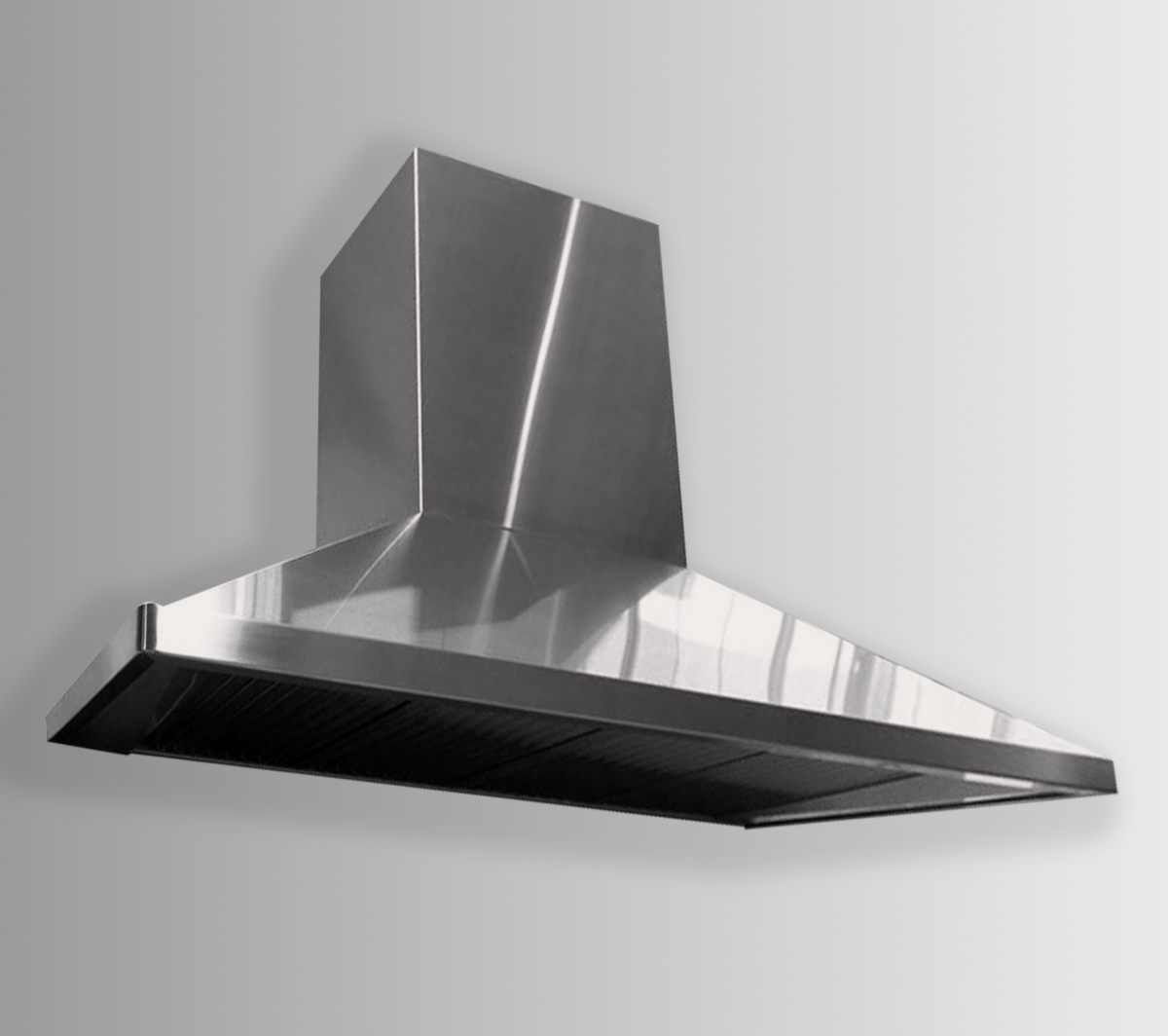 Wall mounted Regis in stainless steel non-directional body with brushed stianless steel trim.